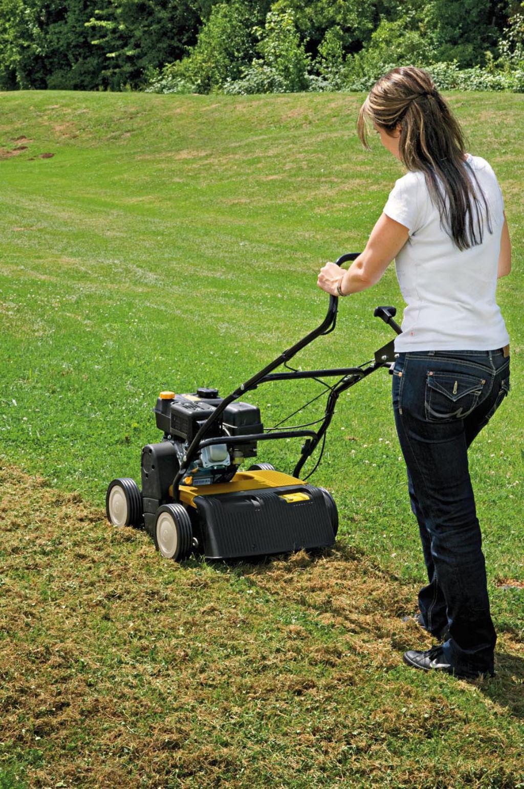 Avec le scarificateur cc v 40 b cub cadet le sol retrouve une a ration optim - Scarificateur pour pelouse ...