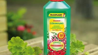 Engrais liquide Algoflash