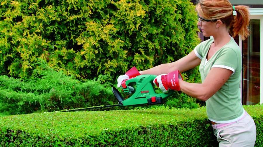 Nouvelle gamme d\'outils jardin électroportatifs Bosch pour l ...