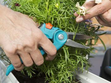 Sécateur herbes et fleurs Gardena