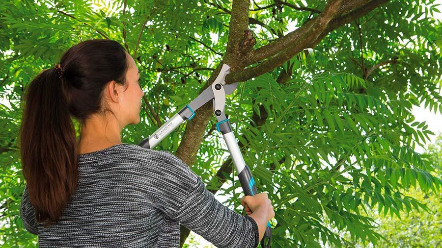 Coupe branches energycut Gardena